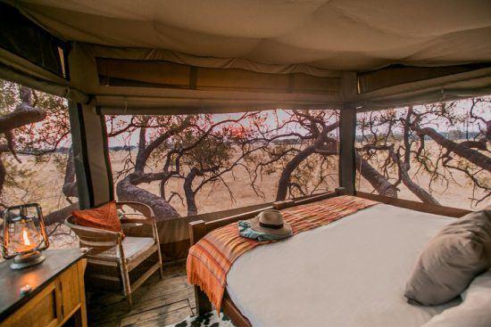 Der luxuriöse Hochsitz The Dove's Nest des Safari-Camps The Hide bietet sich für Hochzeitsreisende an