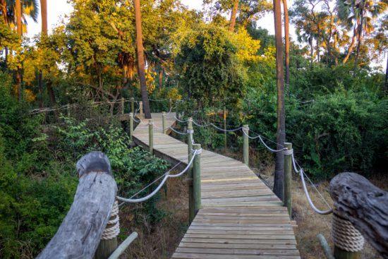 Holzsteg zwischen grünen Palmen verbindet die Suiten der Victoria Falls Island Lodge