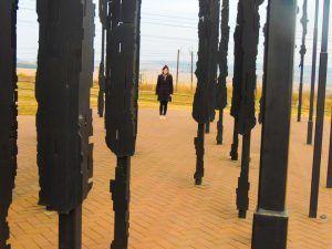 Meander at the Mandela Capture Site
