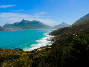 Spotting Whales on Chapman's Peak