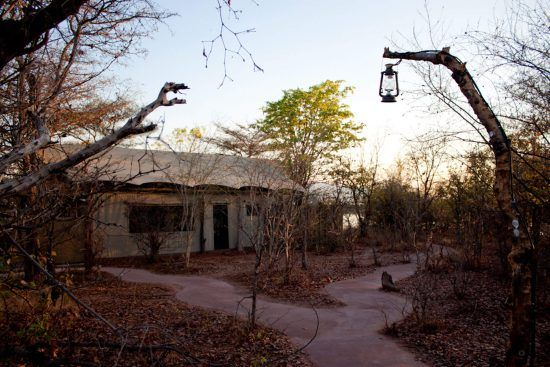 Changa Safari Camp is situated in a private concession in the Matusadona National Park