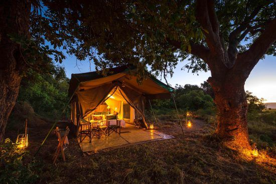 Nights at John's Camp are scored by the sounds of wild nature