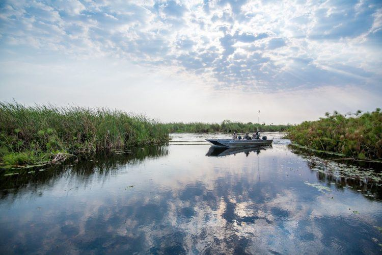 A boat trip on the Okavango River Delta