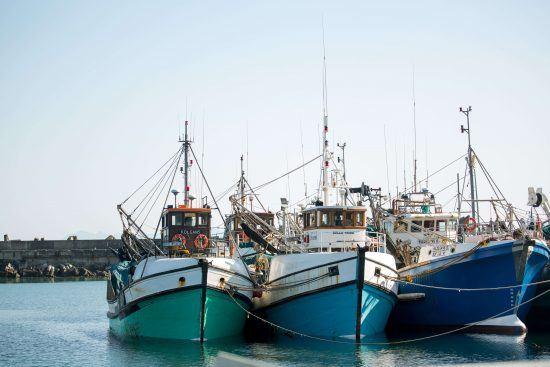 Bâteaux de pécheurs dans le port de Gansbaai, dans la province du Cap-Oriental en Afrique du Sud à Hermanus.