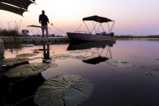 Lever du soleil sur un bateau en croisière sur le Delta de l'Okavango au Botswana.