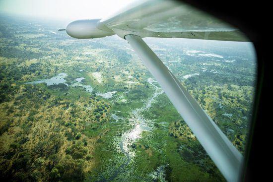 Avião sobrevoa paisagens verdejantes de Botsuana