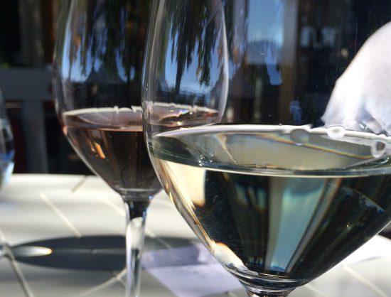 Wine tasting at Babylonstoren
