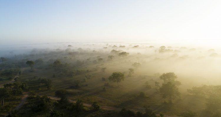 Nelspruit - Kruger National Park