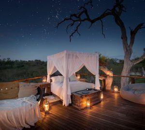 L'un des lodges safari insolites en Afrique que nous préférons : Lion Sands