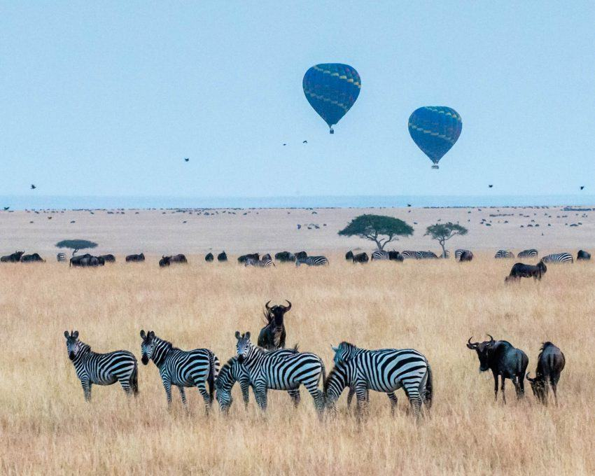 meilleur site de rencontre au Kenya Vitesse d'affaires datant Torino
