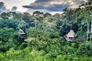 Afrique de l'Ouest | Vue aérienne du Ngaga camp à Odzala