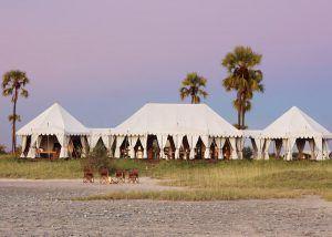 L'un des lodges safari insolites en Afrique que nous préférons : San Camp un des plus beaux hôtels de luxe.