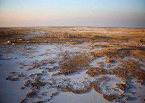 L'un des lodges safari insolites en Afrique que nous préférons: San Camp au Botswana