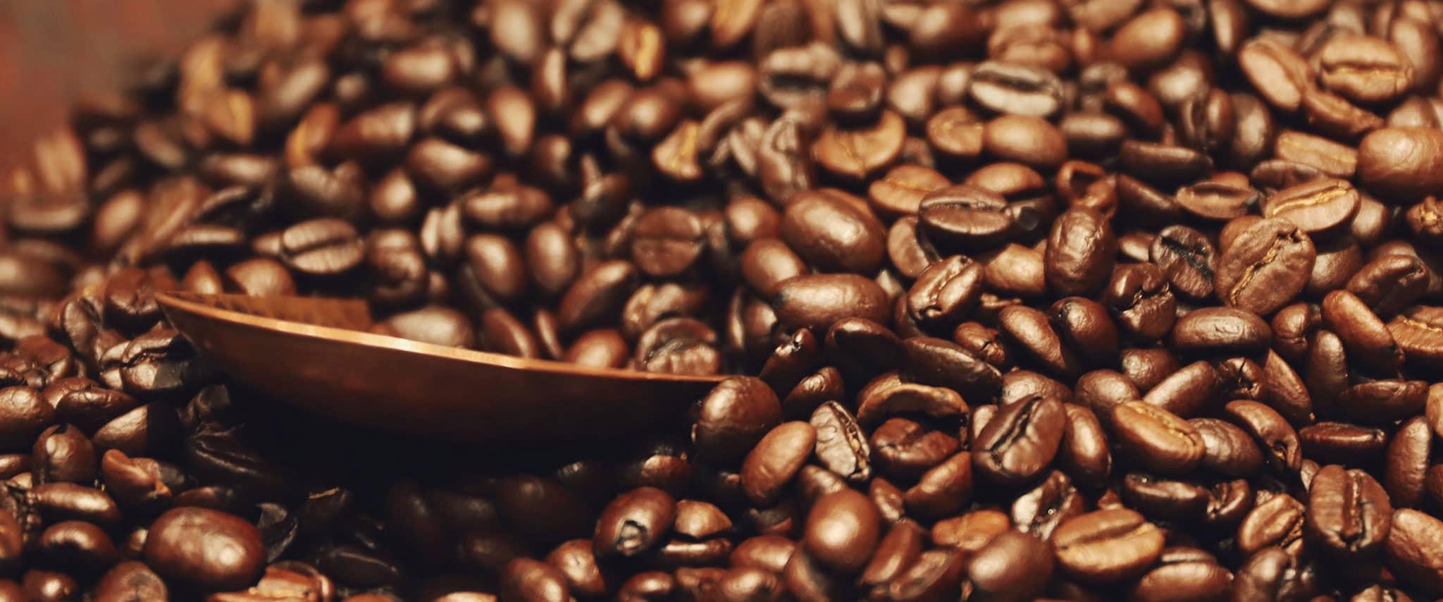 Eine Schale inmitten von unzähligen Kaffeebohnen