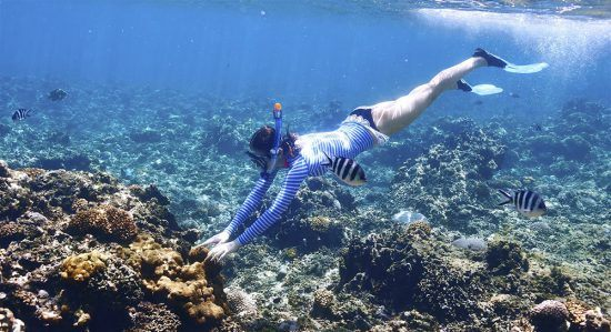 Snorkelling em Seicheles é uma experiência fantástica