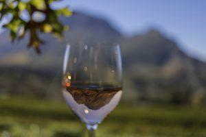 cape wine