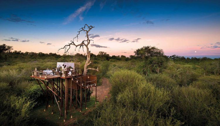 Lion Sands' tree house in the Kruger National Park