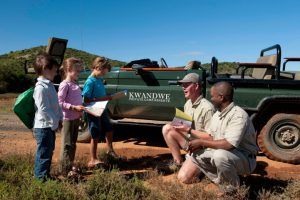 Suivez le guide lors de votre safari sur la Garden Route : la réserve de Kwadndwe est idéale pour vivre une expérience inoubliable avec ses enfants