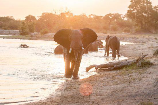 Helen: África ofrece el lugar perfecto para crear magia que cambie la vida