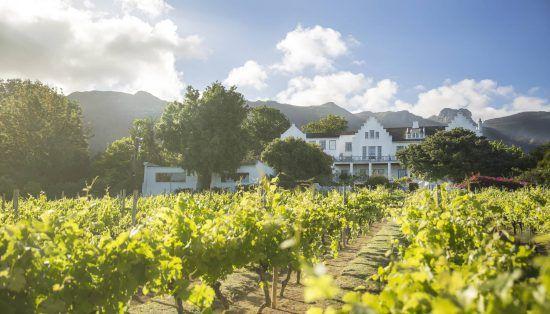 Weinfarm im Kap-Weinland umgeben von Bergen und grünen Weinreben