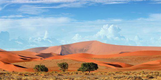 Afrika-Urlaub in Namibia