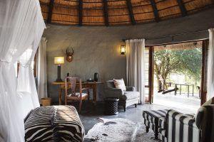 Motswari est l'un de nos campements favoris de la réserve de Timbavati, la réserve où le lion blanc règne en maître.