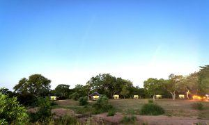 Tentes dans la brousse à Shindzela, campement de la réserve de Timbavati.