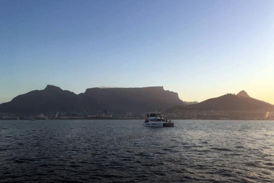 Cruzeiros ao pôr do sol em Table Bay proporcionam vistas arrebatadoras da Cidade do Cabo à distância e a chance de ver animais marinhos e aves diversas