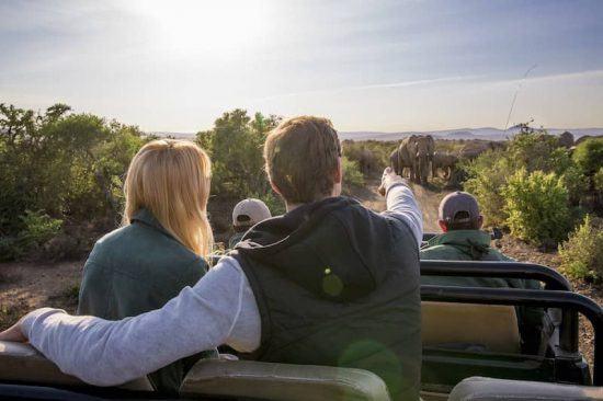 Paar auf Safari auf Ihrem Garden Route Roadtrip