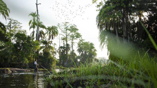 Los paisajes que regala la cuenca del Congo son imperdibles.