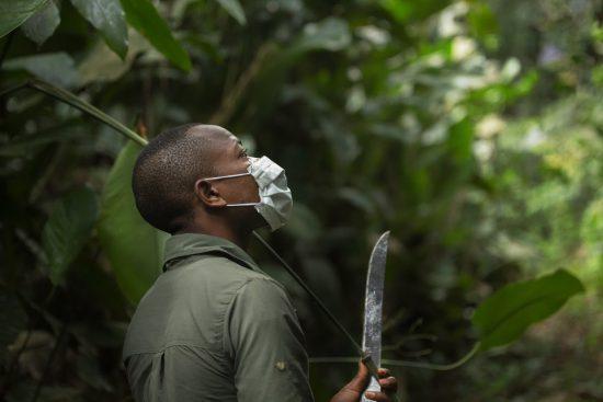 Las máscaras son necesarias para no contagiar a los animales posibles enfermedades.