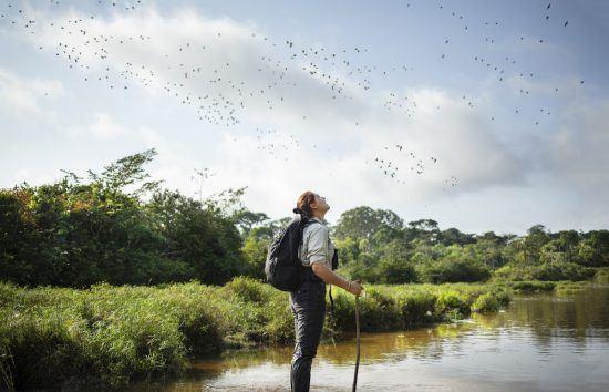 Eine Frau steht in einem seichten Gewässer und beobachtet Vögel am Himmel