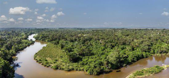 Das Kongobecken aus der Vogelperspektive