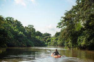 Différence entre le Congo et la RDC | Parc d'Odzala-Kokoua