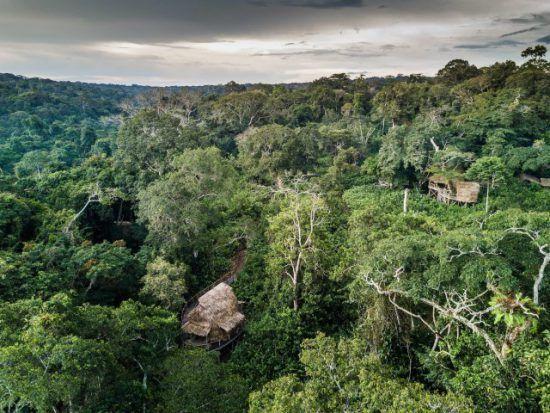 Das Ngaga Camp im Kongobecken eingebettet in den Regenwald der Republik Kongo