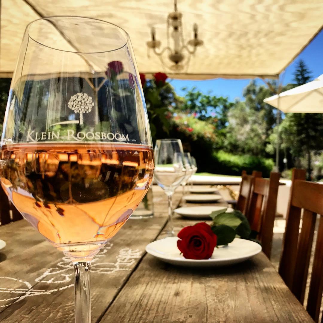 Disfrutando de un rosé en Klein Roosboom