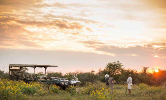 Sundowner-Stop auf Pirschfahrt im Madikwe Game Reserve