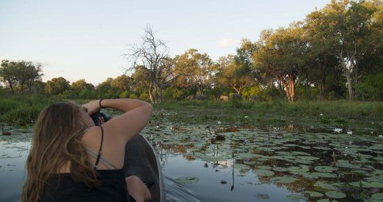 Mokoro-Safari im Okavango Delta in Botswana