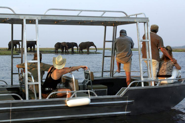 Boat cruise on Chobe River in Botswana
