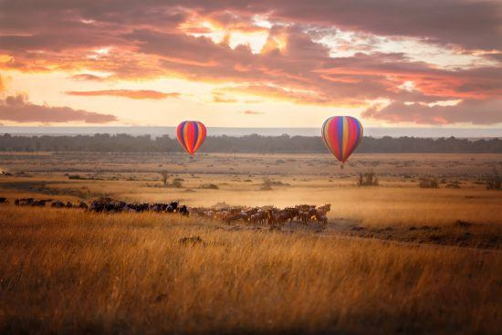 Great Migration in Ostafrika - Zwei Heißluftballons schweben über einer Gnuherde in Afrika