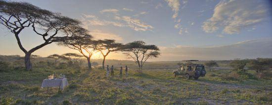 Picknick mit Snacks und Getränken in einer offenen Graslandschaft in Afrika