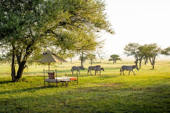 Experience the great migration in Tanzania with Singita Sabora Tented Camp