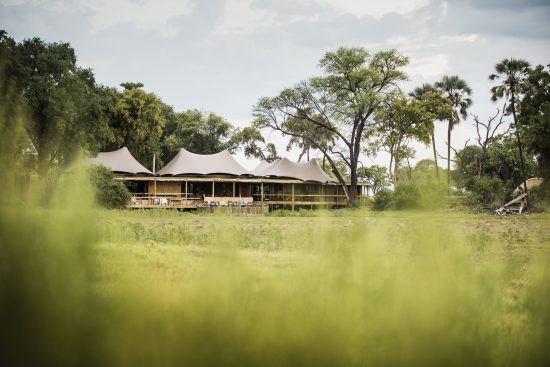 Mombo Camp in the Okavango Delta