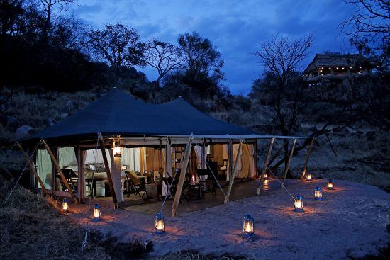 Experience the Great Migration in Tanzania from Elewana Serengeti Pioneer Camp