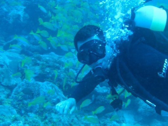 David Ryan diving around the Seychelles
