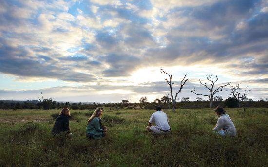 Product & destination in one: Londolozi Private Game Reserve