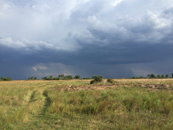 Helen: La tormenta de nubes antes de nuestro avistamiento con los rinocerontes