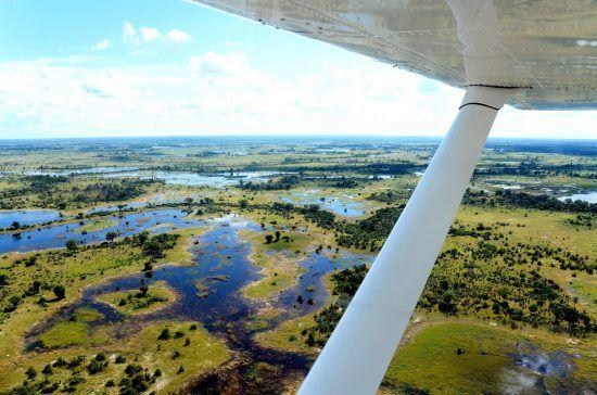 Momento especial: Las inundaciones estacionales regresan al Delta del Okavango