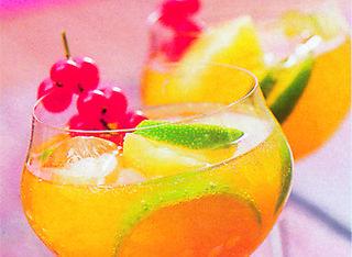5 modi per preparare un Gin Tonic