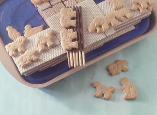 L'arca di Noè su un mare di crema blu
